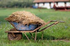 有牲畜粪肥的独轮车 免版税库存图片