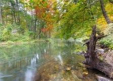 有狂放的河的秋季森林 免版税库存图片