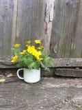 有狂放的黄色花的老白色搪瓷杯子 免版税库存照片