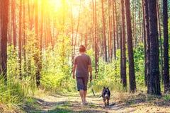 有狗的一个人在森林里走 库存照片