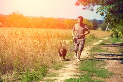 有狗的一个人沿一条农村路走 免版税库存照片