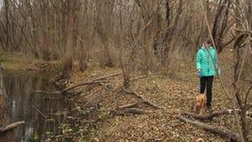 有狗的十几岁的女孩由河走在秋天公园 影视素材