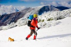 有狗的女孩在冬天山 免版税库存照片