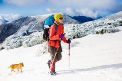 有狗的女孩在冬天山 免版税库存图片