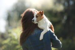 有狗的女孩在她的胳膊 一条小的杰克罗素狗 库存照片