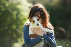 有狗的女孩在她的胳膊 一条小的杰克罗素狗 免版税库存图片