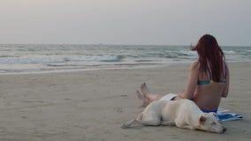 有狗的女孩在海滩画 画家 影视素材