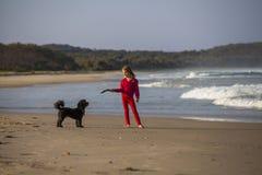 有狗的女孩在海滩 库存图片