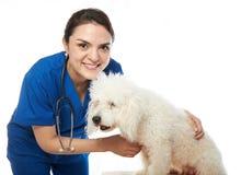 有狗的女性狩医 免版税库存照片