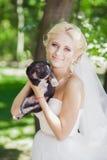 有狗的新娘 库存图片