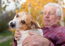 有狗的老人在公园 免版税图库摄影