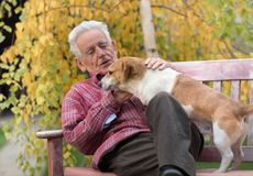 有狗的老人在长凳在公园 库存图片