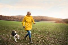 有狗的资深妇女在秋天自然的步行 免版税库存照片