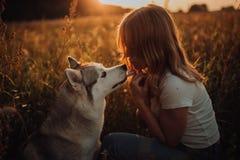 有狗的,日落美丽的典雅的女孩 领域背景 免版税库存图片
