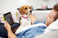 有狗的年轻人坐沙发使用数字式片剂 库存照片