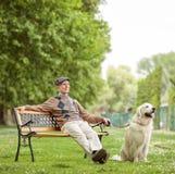 有狗的年长人坐一条长凳在公园 免版税库存照片