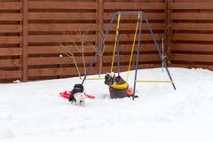 有狗骑马的小女孩在雪的摇摆 图库摄影