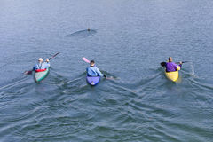 有独木舟的三名划船者 免版税库存照片