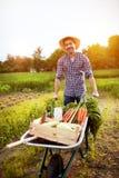 有独轮车的农夫有很多菜 免版税库存照片