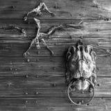有狮子敲门人和鸟骨骼的城堡的木门户 免版税图库摄影
