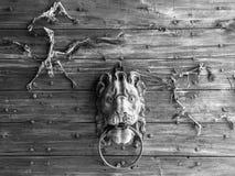 有狮子敲门人和鸟骨骼的城堡的木门户 免版税库存图片