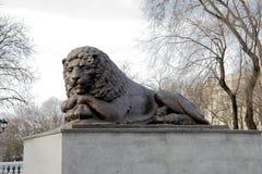 有狮子的喷泉在苏维埃正方形  库存图片