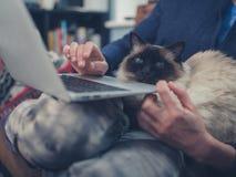 有猫和膝上型计算机的妇女 免版税库存照片
