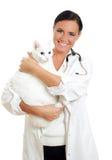 有猫的兽医 免版税库存照片