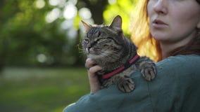 有猫的妇女在公园 影视素材