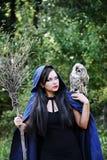 有猫头鹰谈话的巫婆 免版税库存图片