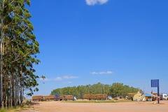 有玉树日志的采伐的卡车本文或木材产业的,乌拉圭,南美 免版税库存图片