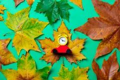 有玩具汽车和槭树叶子的葡萄酒闹钟 库存照片