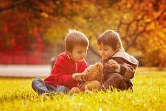有玩具熊的两个逗人喜爱的小男孩在公园 免版税图库摄影