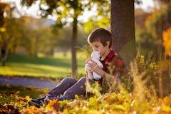 有玩具熊的可爱的小男孩在公园在一秋天天 库存照片