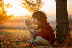 有玩具熊的可爱的小男孩在公园在一秋天天 库存图片