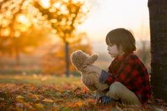 有玩具熊的可爱的小男孩在公园在一秋天天 图库摄影