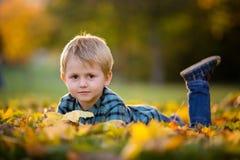 有玩具熊的可爱的小男孩在公园在一秋天天 免版税图库摄影