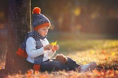 有玩具熊的可爱的小男孩在公园在秋天天 免版税图库摄影