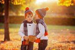 有玩具熊的可爱的弟弟在公园在秋天天 免版税库存图片