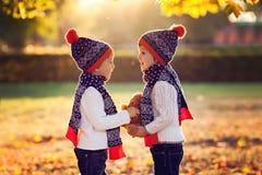 有玩具熊的可爱的弟弟在公园在秋天天 免版税图库摄影