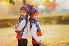 有玩具熊的可爱的弟弟在公园在秋天天 免版税库存照片