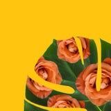 有玫瑰的叶子 免版税库存图片