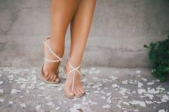 有玫瑰花瓣的女孩的腿 图库摄影
