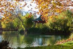 有环境美化的庭院池塘 免版税库存照片