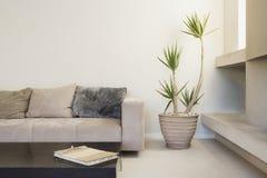 有现代装饰的宽敞客厅 库存照片