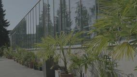 有玻璃墙的,基础,三角形屋顶,庭院床大温室 股票录像