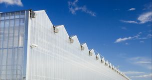 有玻璃墙的,基础,三角形屋顶,庭院床大温室 4k生长的园艺音乐学院 股票录像