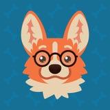 有玻璃的小狗狗情感头 逗人喜爱的狗的传染媒介例证在平的样式的显示书呆子情感 怪杰emoji 皇族释放例证