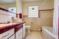 有瓦片墙壁修剪和大块玻璃窗口的卫生间 库存图片