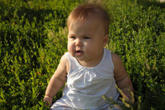 有甜肥胖面颊的小婴孩 免版税库存照片